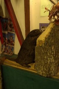 Muzeum Sat-Okha-20140723-11-27_23